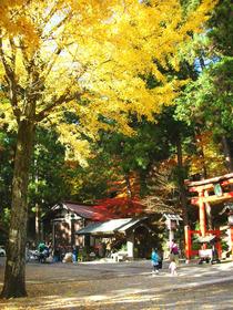 Hiei shrine-2.jpg