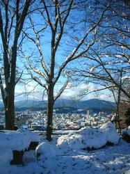 Shiroyama park(2).jpg