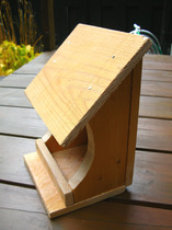 bird feeder(1).JPG