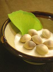 ginkgo nuts(1).jpg