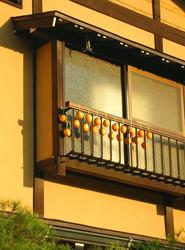 hanging persimmons.jpg