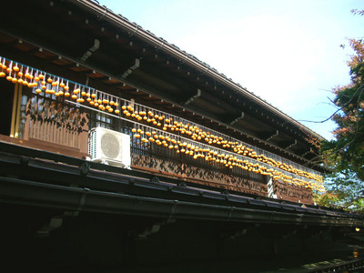 hosi-gaki, Furukawa .JPG